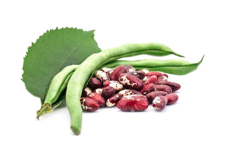 Röda bönor och haricot vert på en vit bakgrund royaltyfri foto