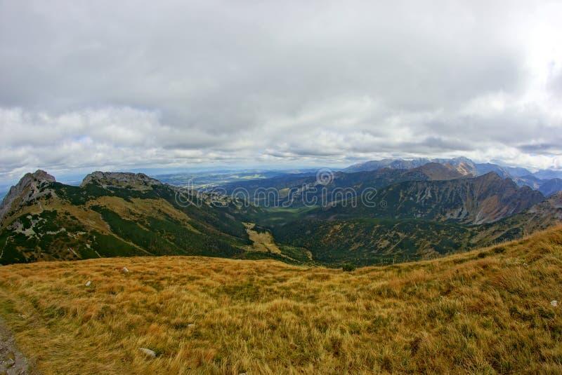 Röda bergmaxima, Tatras berg i Polen fotografering för bildbyråer