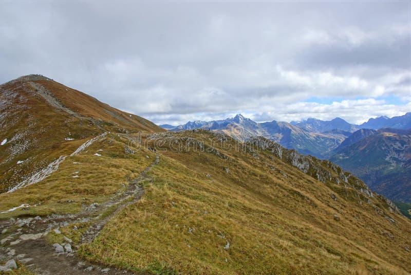 Röda bergmaxima, Tatras berg i Polen royaltyfria bilder