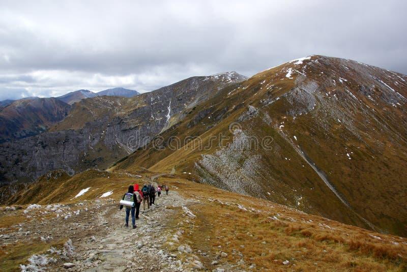 Röda bergmaxima, Tatras berg i Polen arkivfoto