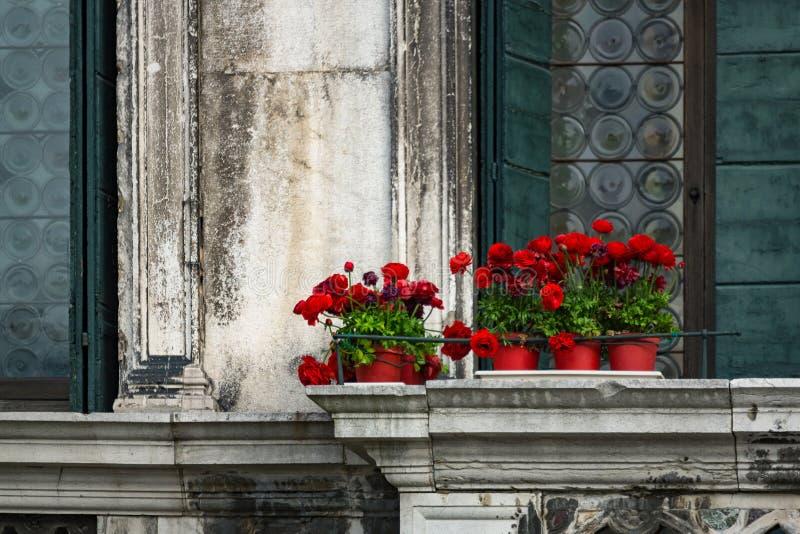 Röda blommor på en tappningbalkong i Venedig royaltyfri foto