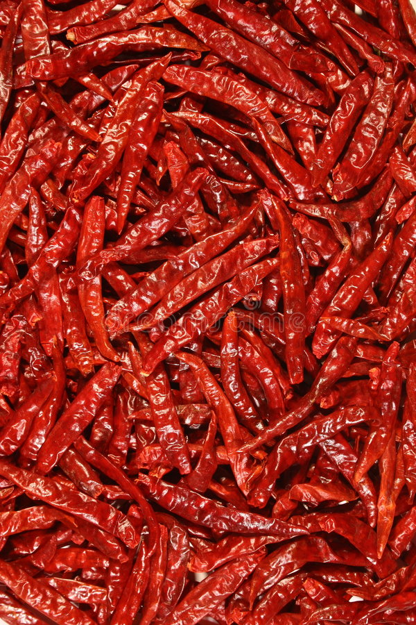 röda chilir arkivfoton