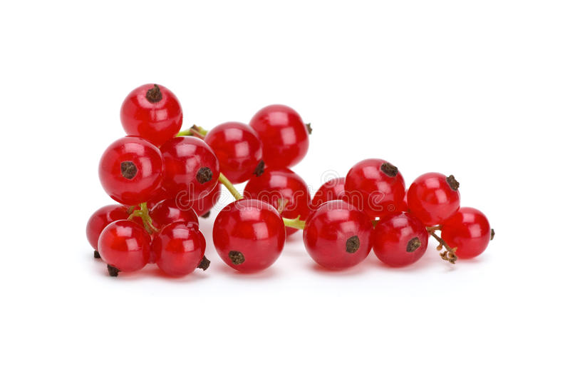 röda clastervinbär royaltyfria foton