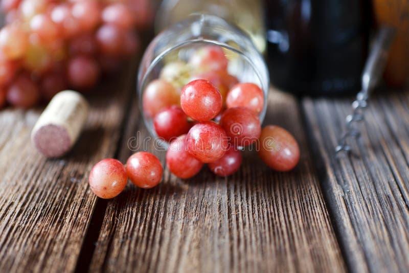 Röda druvor, exponeringsglas, flaska av rött vin, kork och korkskruv på vin fotografering för bildbyråer
