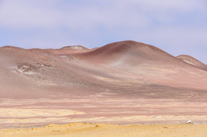 Röda dyn i Paracas den nationella reserven, Peru royaltyfri foto