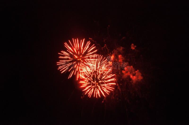 Röda fyrverkerier i himlen royaltyfri foto