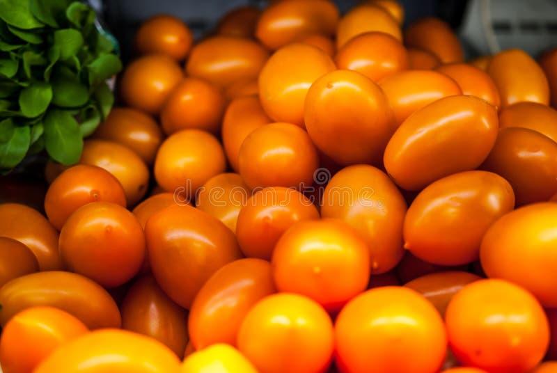 Röda gula ovala tomater på en hylla i ett lager med en grön sallad royaltyfri fotografi