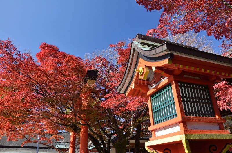 Röda höstsidor och relikskrin, Kyoto Japan arkivfoto