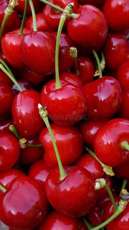 Röda körsbär för handfull som så är läckra royaltyfria bilder