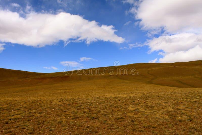 Röda kullar av Altai arkivfoton