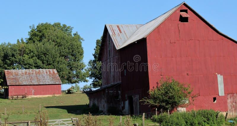 Röda ladugårdar fotografering för bildbyråer