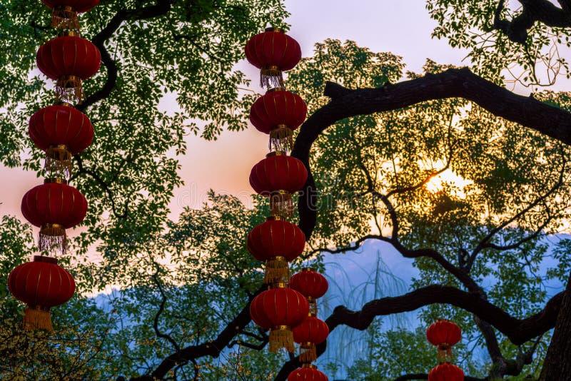 Röda lyktor på ett träd royaltyfri fotografi