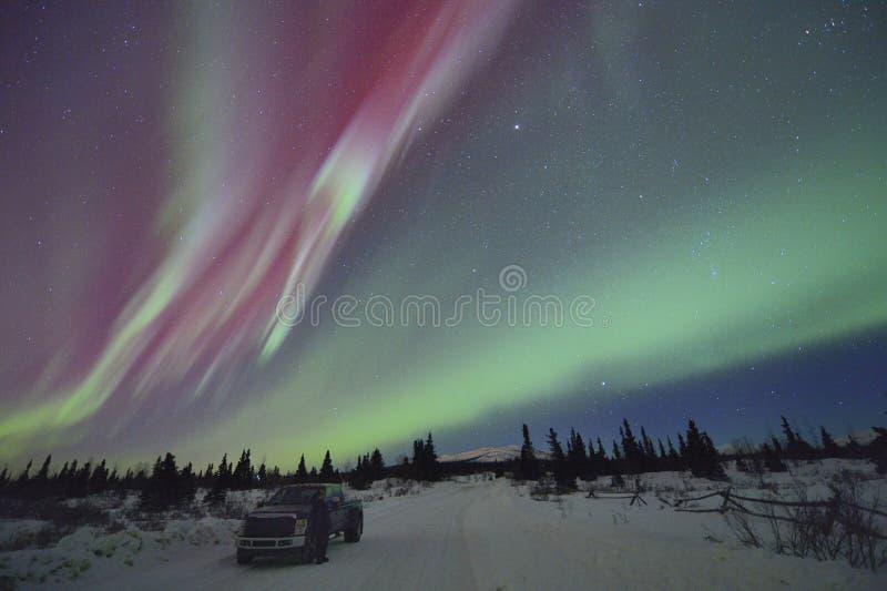 Röda nordliga ljus och hållande ögonen på man med hans lastbil. royaltyfri foto