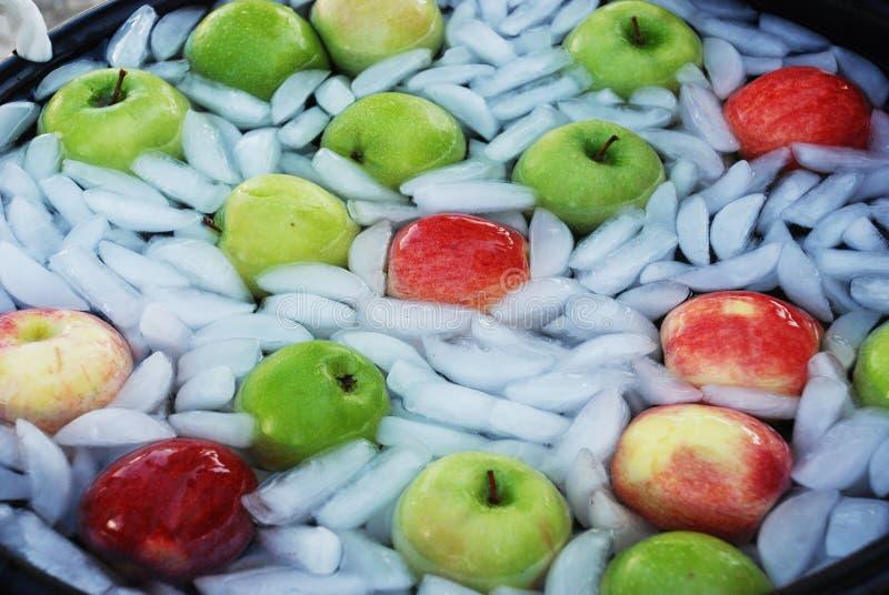 Röda och gröna äpplen på is fotografering för bildbyråer
