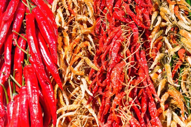 Röda och gröna varma kyliga peppar arkivfoto