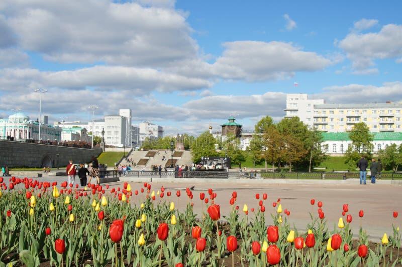 Röda och gula tulpan på bakgrunden av cityscapen med moln arkivbilder