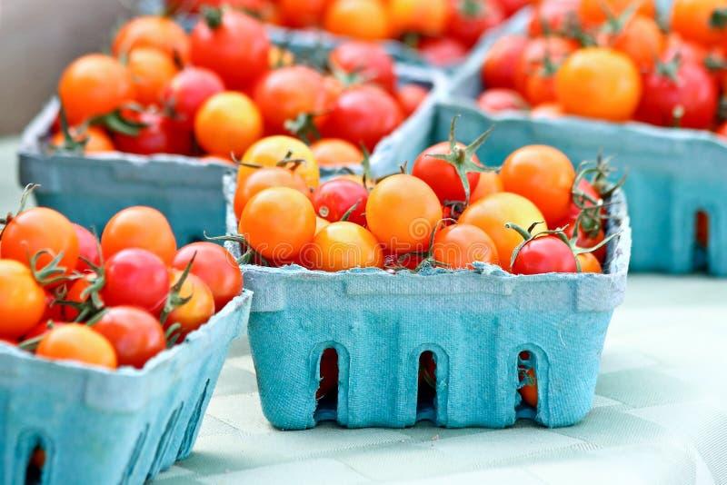 Röda och orange tomater royaltyfri foto