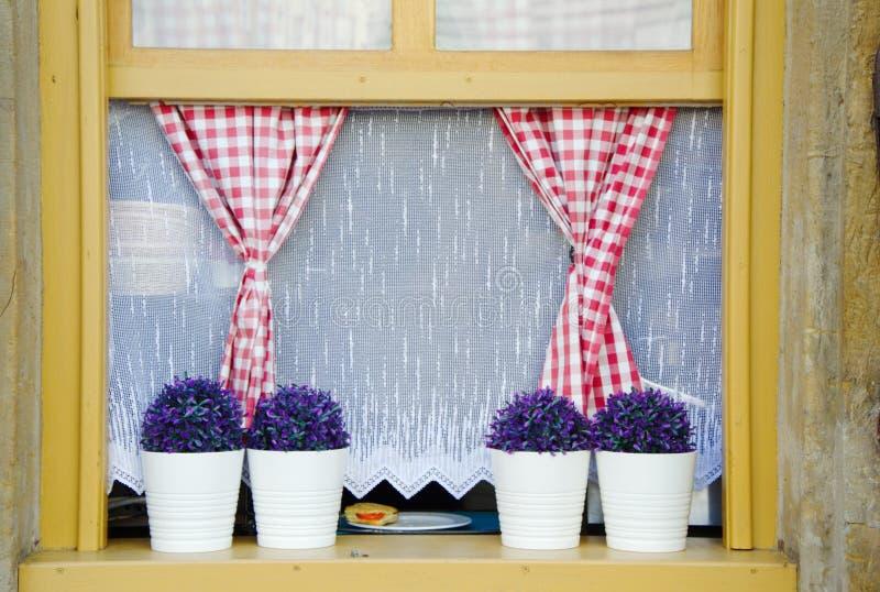 Röda och vitgardinförhängear med den vita gardinen och blomkrukor i träfönstret royaltyfria bilder