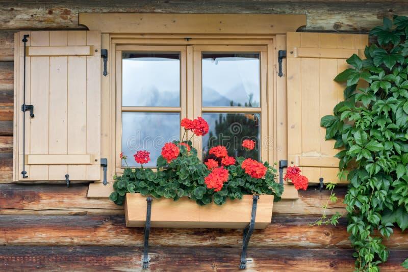 Röda pelargon i en planter hängs på en fönsterfönsterbräda av ett Tyrolean hus royaltyfri foto