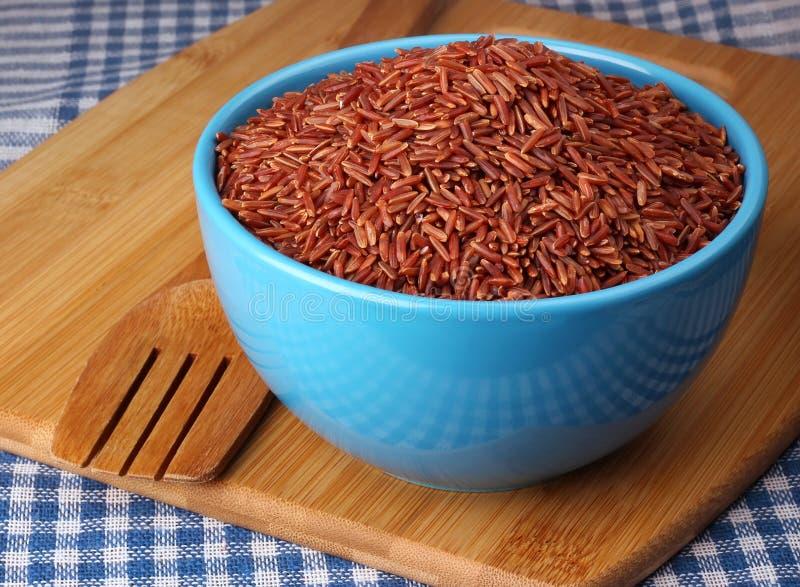 Röda ris i den blåa bunken royaltyfri bild