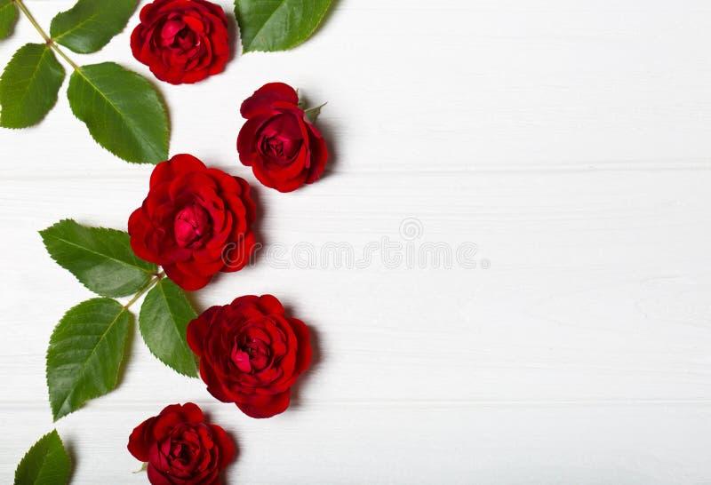 röda ro Härliga blommor på en vit deoevian tabell arkivfoto