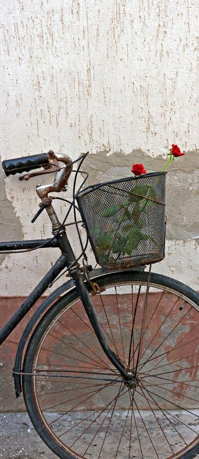 Röda ro i korg av gammal rostig cykel 3 royaltyfri foto
