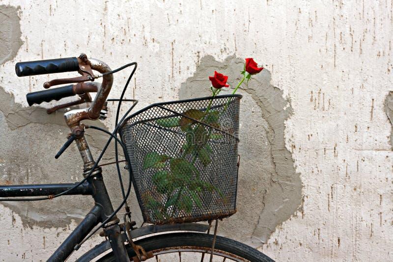 Röda ro i korg av gammal rostig cykel 4 royaltyfri bild