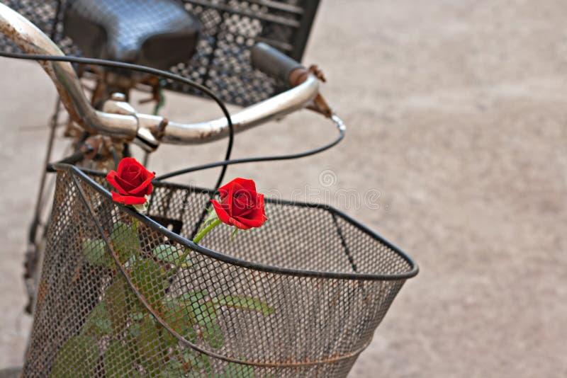 Röda ro i korg av gammal rostig cykel 5 arkivfoto
