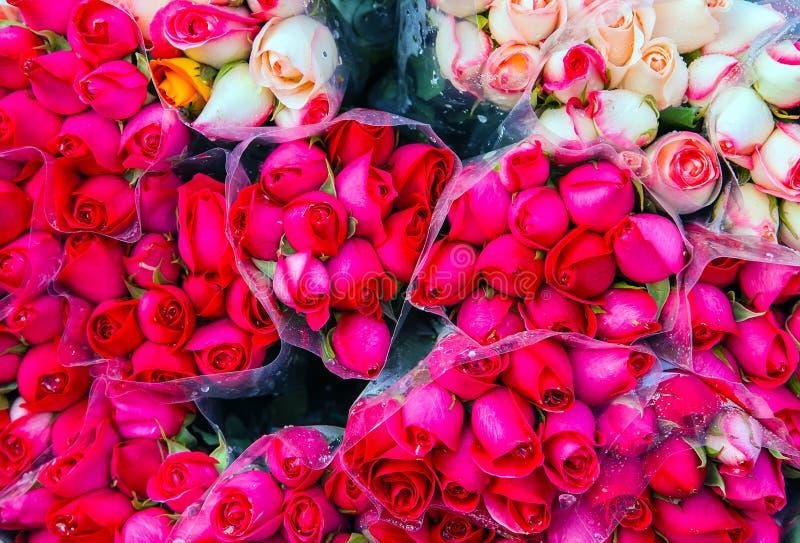 röda rosa rosor för bukettkorall royaltyfria bilder