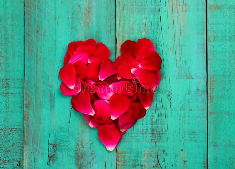 Röda roskronblad i formen av hjärta på bekymrad antik kricka slösar den wood dörren royaltyfri fotografi