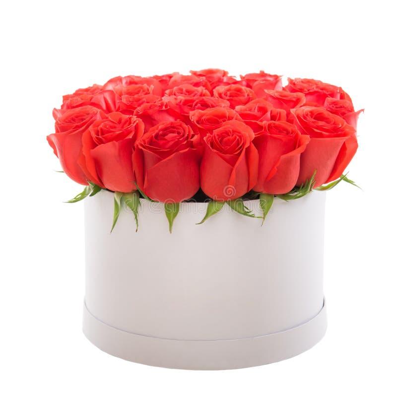 Röda rosor i den vita lyxgåvaasken Blommaask royaltyfria bilder