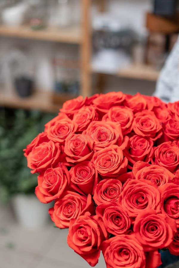 Röda rosor i exponeringsglasvaser i kvinnors händer Scharlakansrött rött för grupp begreppet av en blomsterhandlare i en blomster arkivbild