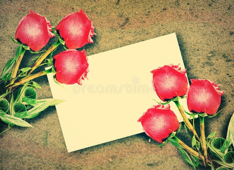 Röda rosor och tomt vitt gåvakort arkivfoto