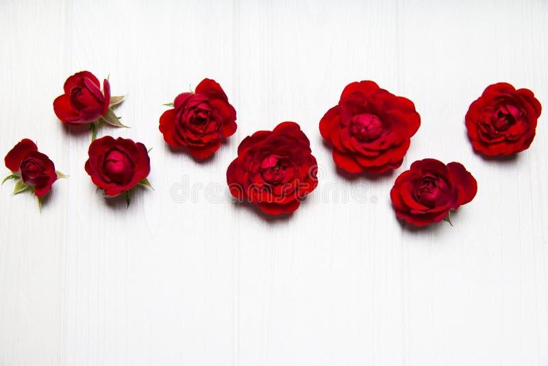 Röda rosor på en vit trätabell Tomt avstånd för text fotografering för bildbyråer