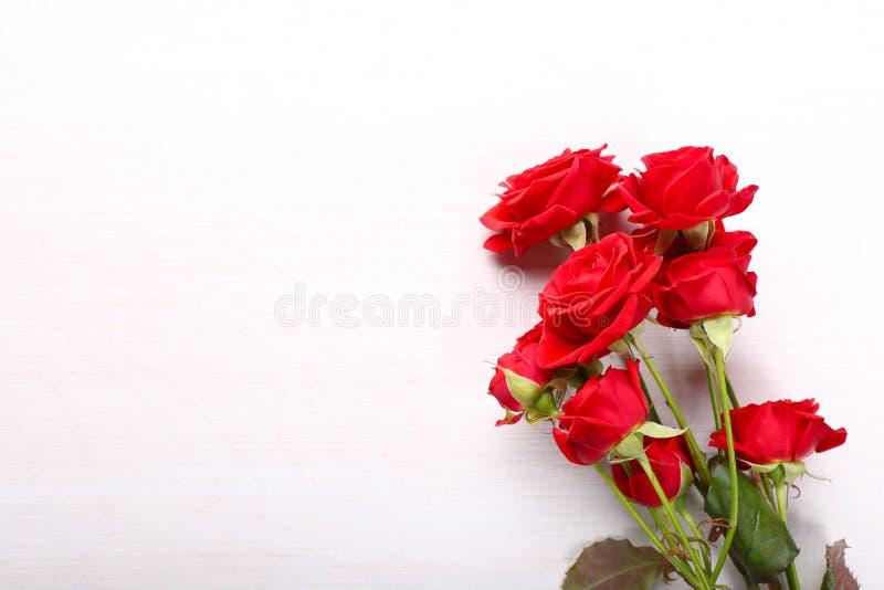 Röda rosor på vit träbakgrund royaltyfria foton