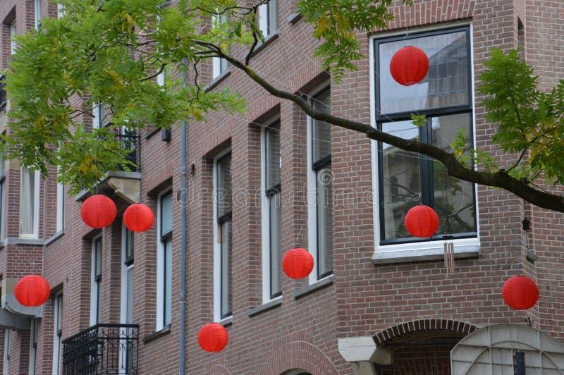 Röda runda lyktor i ett träd royaltyfri bild