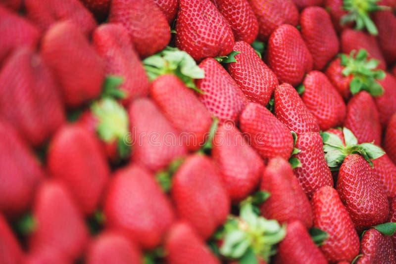 Röda saftiga jordgubbar på räknaren av fruktmarknaden arkivfoton