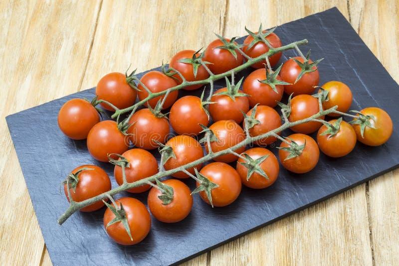 Röda tomater på filial royaltyfri bild