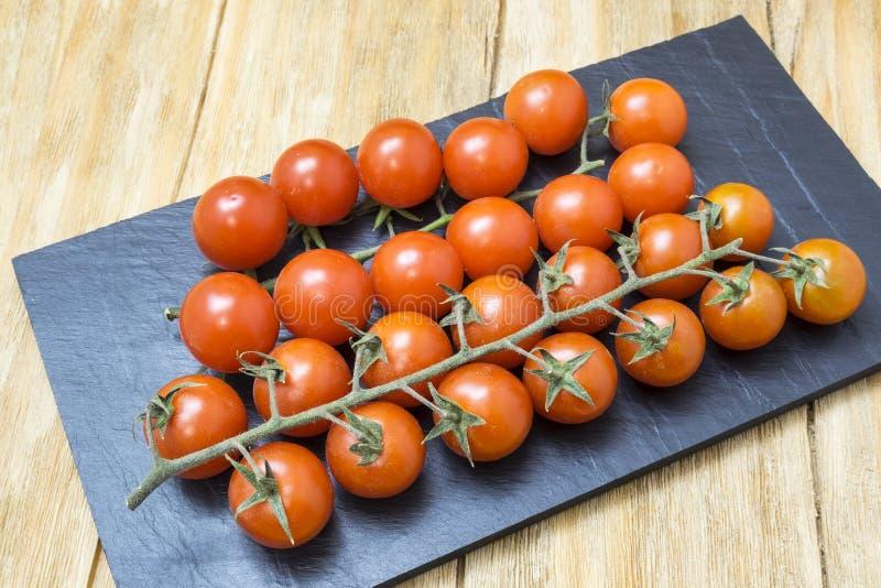 Röda tomater på filial royaltyfri fotografi