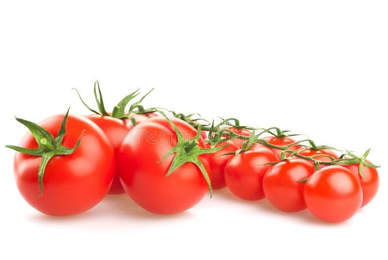 Röda tomater på vit bakgrund arkivfoton