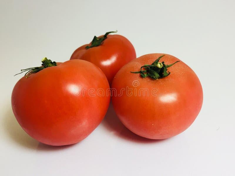 3 röda tomatstudio arkivfoto