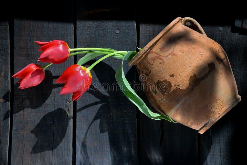 Röda tulpan i forntida lerakruka arkivfoto