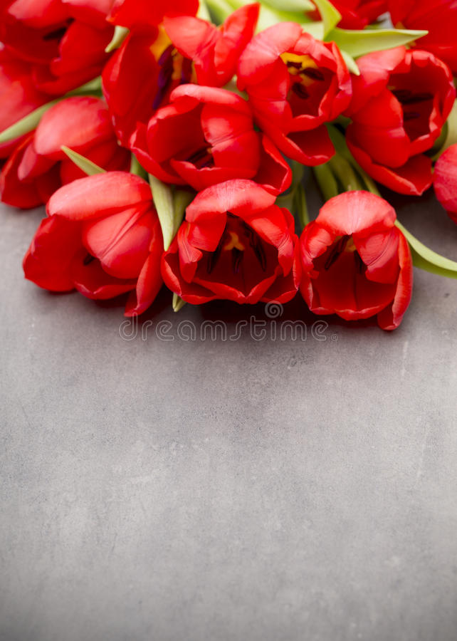 Röda tulpan på en träbakgrund royaltyfria bilder