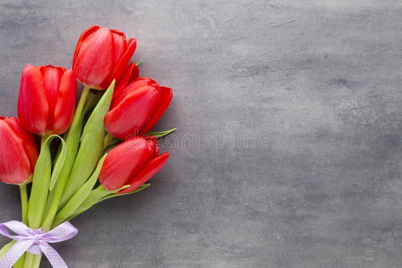 Röda tulpan på en träbakgrund royaltyfri bild