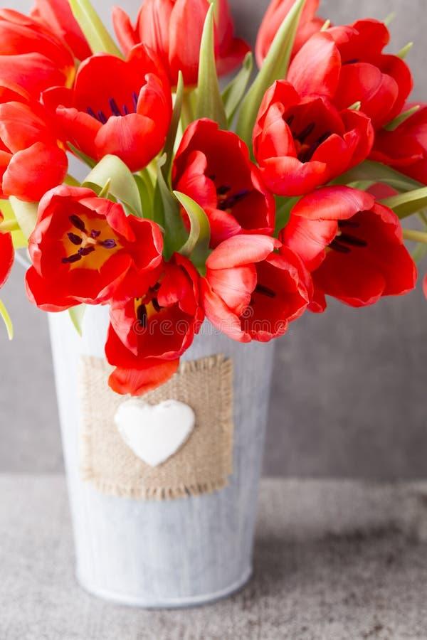 Röda tulpan på en träbakgrund royaltyfri foto