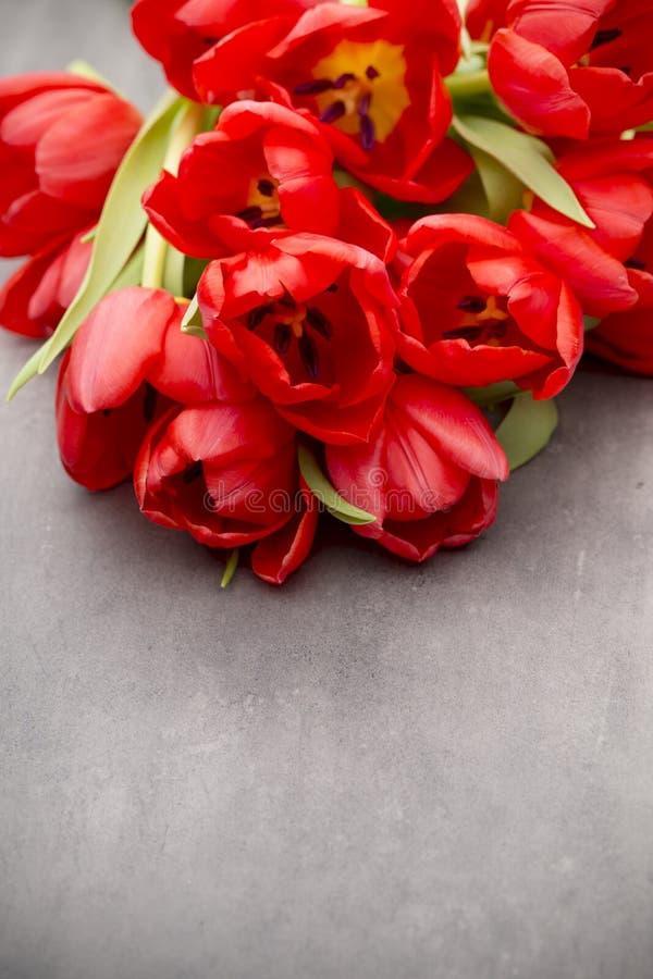 Röda tulpan på en träbakgrund arkivbild
