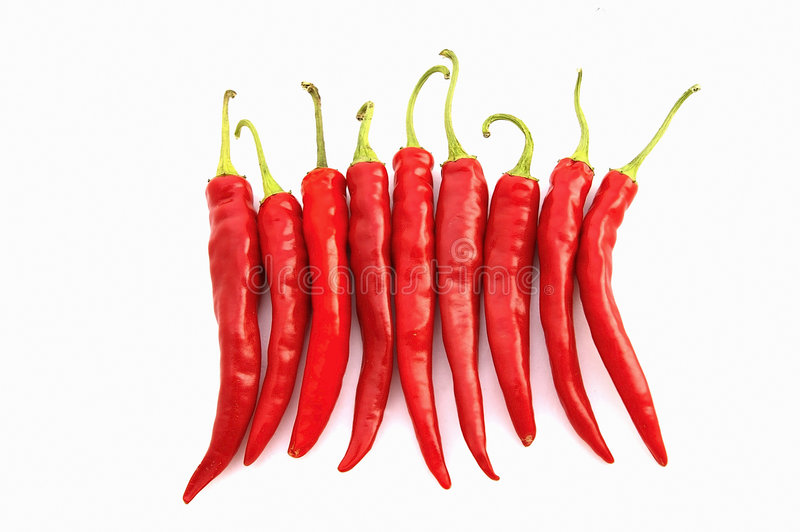 röda varma peppar för chili fotografering för bildbyråer
