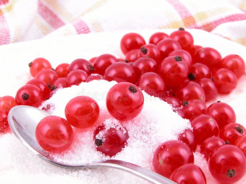 Download Röda vinbär fotografering för bildbyråer. Bild av kalori - 990295