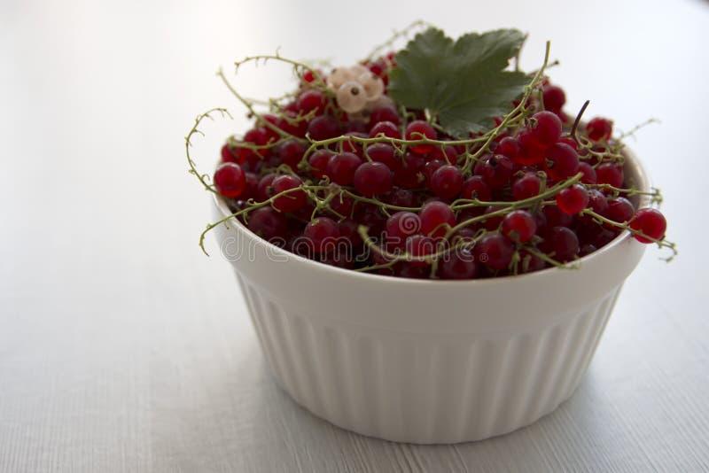 Röda vinbär i en vit kopp, på en vit bakgrund royaltyfria bilder