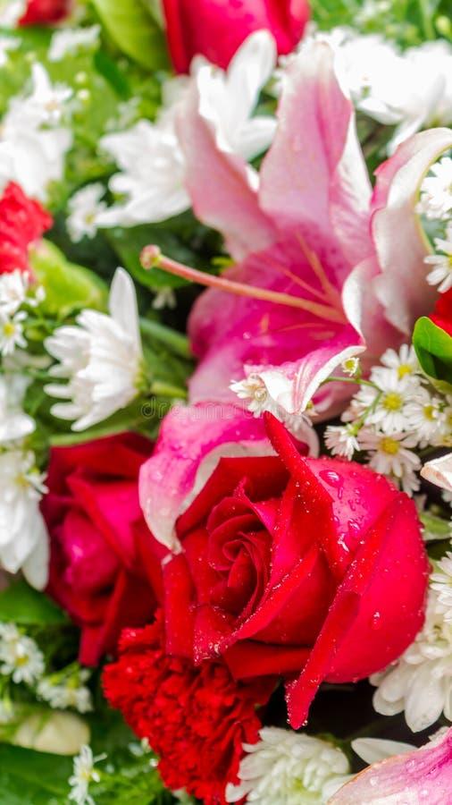 Röda vita blommor för ros och i bukett arkivbild